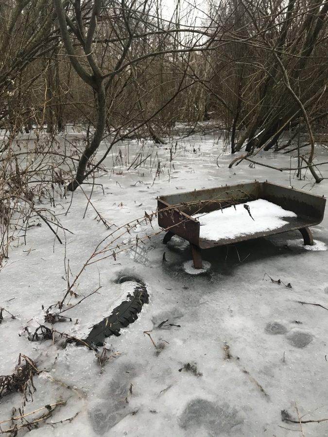 Quietness+in+Winter