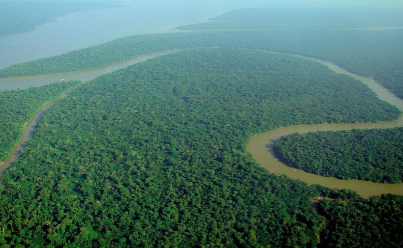 Aerial+view+of+the+Amazon+Rainforest+before+it+was+engulfed+in+flames.