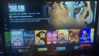 The typical Netflix home screen where all of the possible movies and shows are at a viewer´s disposal. Photo courtesy of Alex Conte.