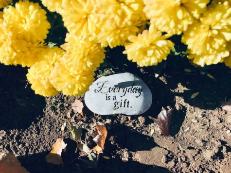 A Time to be Grateful: An inspirational garden stone. Photo courtesy: Steph Galaburri, November 8, 2020.