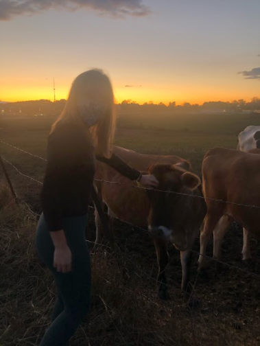 Due to COVID many activities are canceled this semester. This has left them to find things outdoors. For Corina Massey, Horsebarn Hill has been a covid safe place to watch the sunset. Taken November 2020. Photo Courtesy of Brian Massey.
