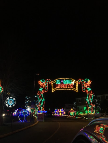 A Magical Holiday Event: The lit up entrance decorated with Christmas lights to guide you into the rest of the light show.  Photo Courtesy: Kaitlyn Dalby, December 8, 2020.