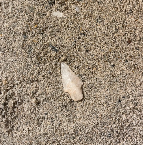 Picture of Quartz Point Found In Connecticut. Taken December 7, 2020. Photo Courtesy of Aidan Glass.