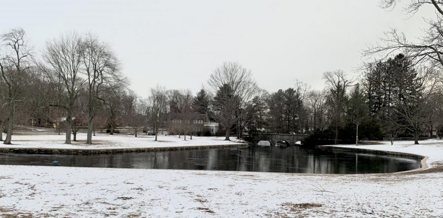 Winter Wonderland: A frozen pond near downtown Milford, which may be skateable if cold weather continues. Photo Courtesy: Katharine Harrison, January 2020