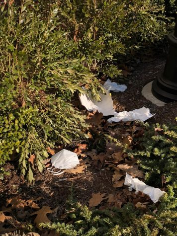 A discarded medical mask among common litter at Pains Road. Photo courtesy: Maria Garbin, Mar. 10