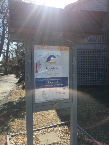 Welcoming Sign: This Connecticut Audubon Society sign is the first thing you see when you walk in advertising that it is their 25th anniversary.  Photo Courtesy: Kailtlyn Dalby, March 20, 2021